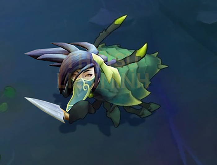 Akali after nerfed finnally has some counterplay.