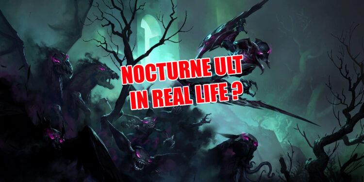 nocturne bug
